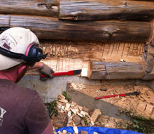 Log Replacement And Rot Wood Repair For Log Homes High